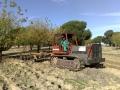 Tractor de cadenas con grada de discos