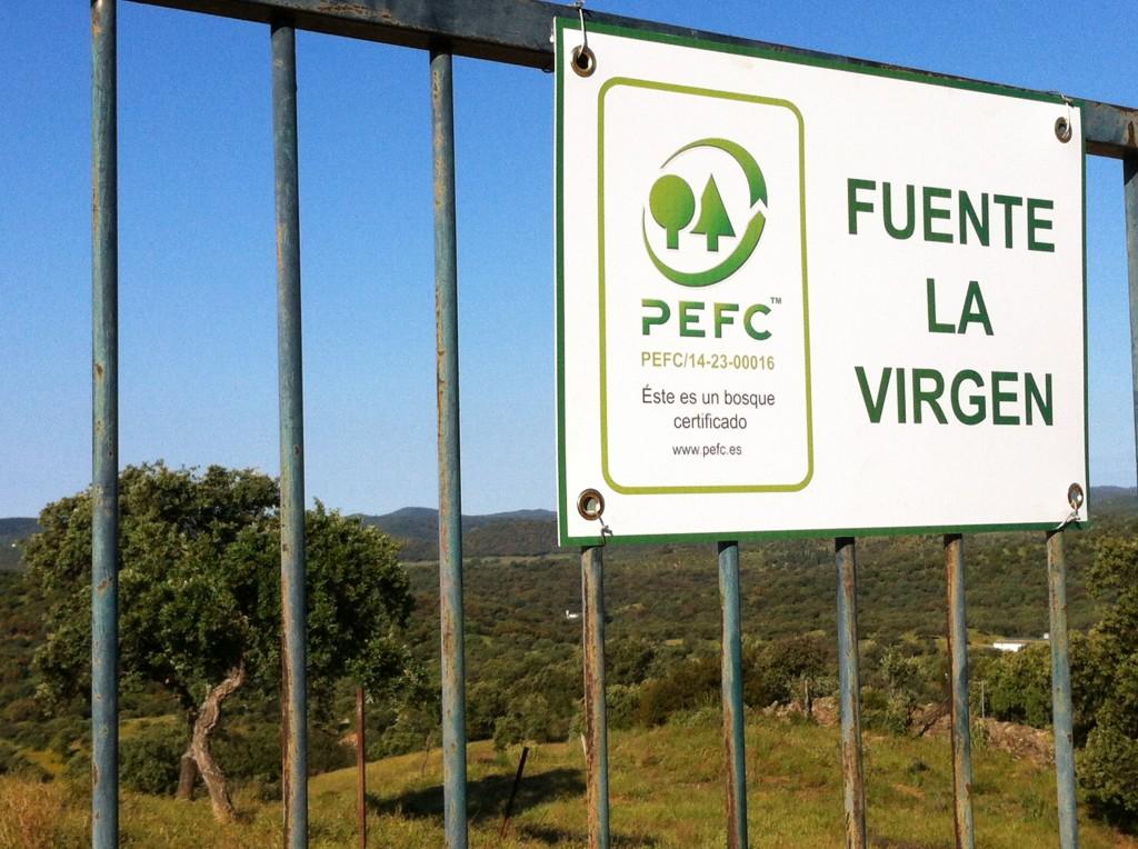 Cartel PEFC FLV